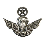�����ũ ���� - Special Force Badge (Ÿ��/�����)